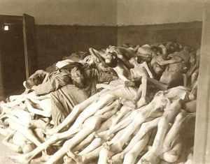 holocaust-bodies